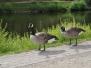 Parc de Namur